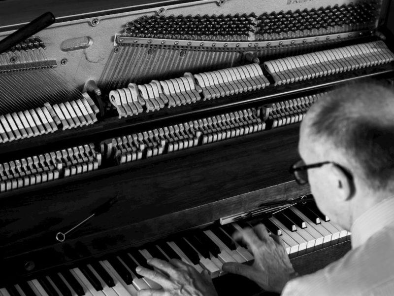 Piano Tuner - Frank-8461